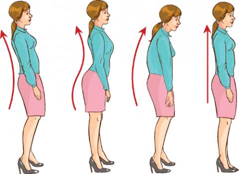 Postura-correcta-481x350