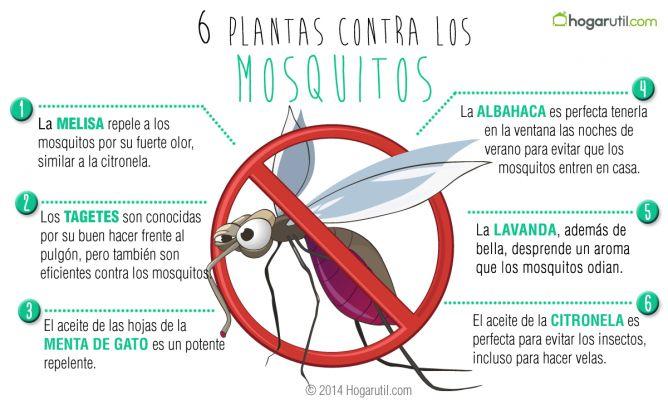 plantas-contra-mosquitos-668x400x80xX