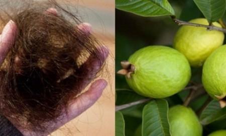 guayaba-remedio-para-el-pelo