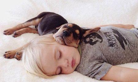 tu-perro-duerme-contigo-3