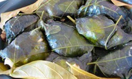 hojas-de-aguacate